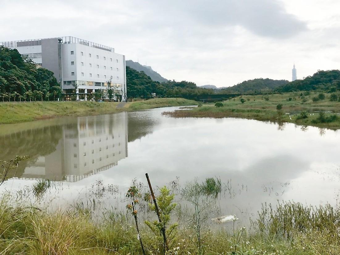 國家生技園區生態池遍布螯蝦、福壽螺。 記者侯俐安/攝影