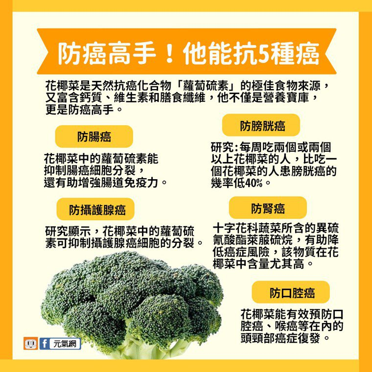 花椰菜能抗5種癌。製圖/黃琬淑