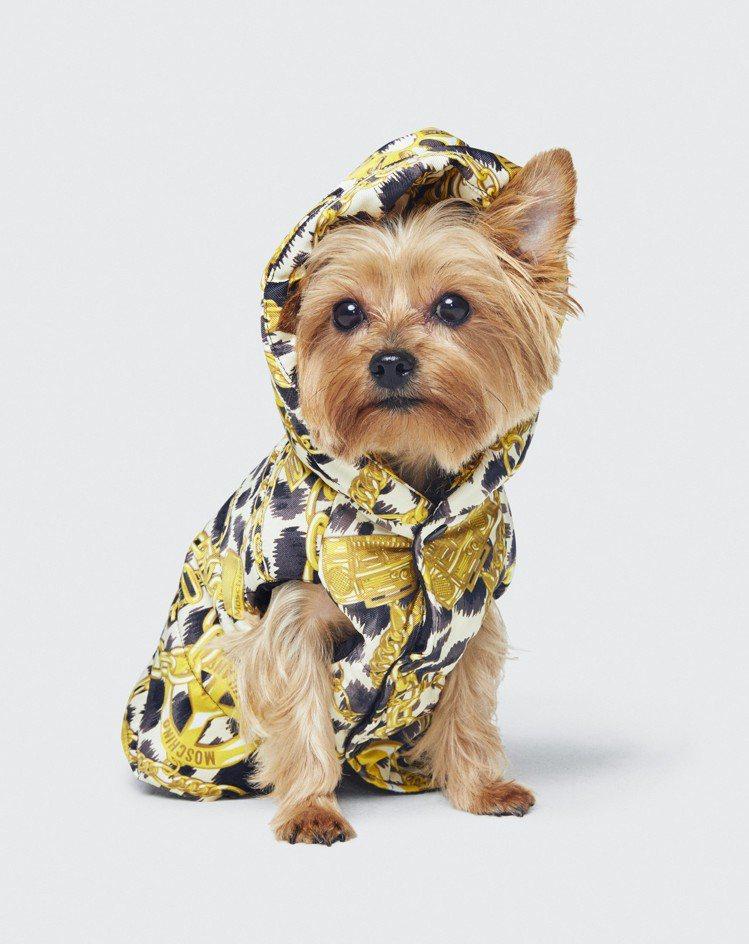 Moschino[TV] H&M系列還備有寵物服裝。圖/H&M提供
