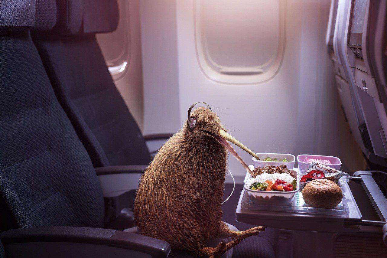 紐西蘭航空系列創意短片上線,由紐西蘭國鳥奇異鳥「Pete」獨挑大樑,透過他的視角...