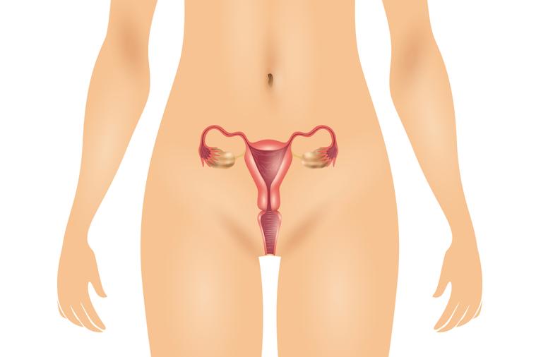子宮頸癌已經成為台灣女性癌症發生率及死亡率極高的疾病,台灣平均每年約新增1500...