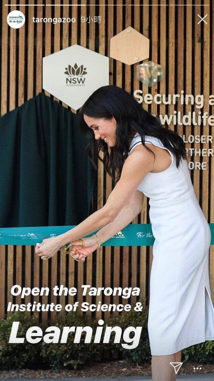 梅根身穿Karen Gee配戴黛妃的珠寶參訪澳洲參觀動物園。圖/取自IG @ta...