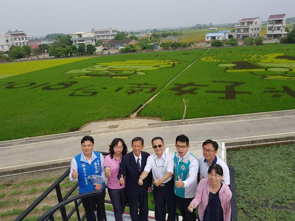 彩繪稻田美景又來了,周六起在台南後壁熱鬧展開。記者謝進盛/攝影