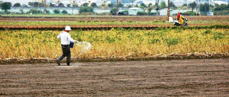有機農產品爭議不斷。 圖/聯合報系資料照片