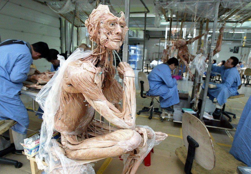 1999年在中國大連註冊成立的「馮.哈根斯生物塑化公司」,正進行的塑化技術的屍體...