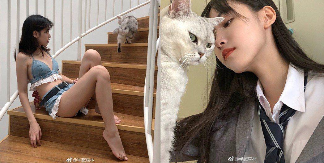 圖片來源/半藏森林微博