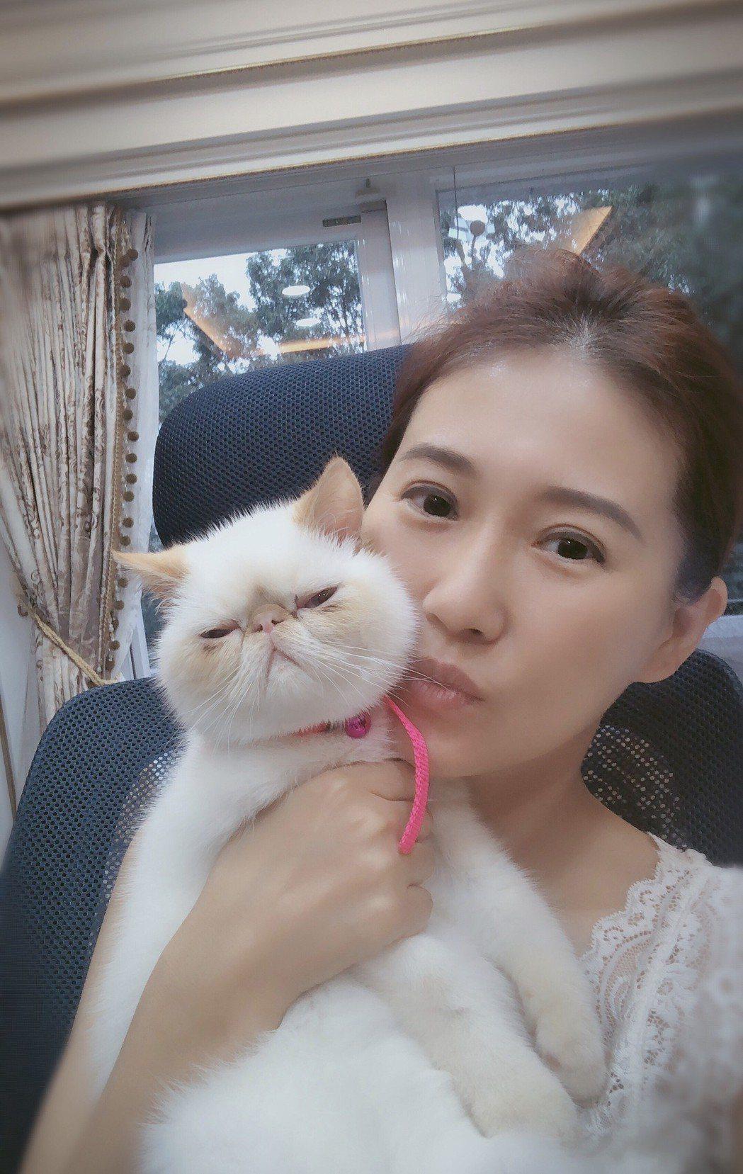 米凱莉與家中愛貓  圖/米凱莉提供
