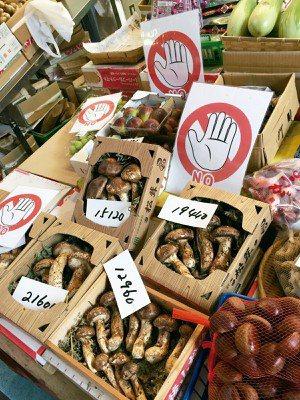 珍貴的松茸分各種等級,擺上大大的禁止觸摸標示,拜託消費者「不要捏我」。 圖/朱慧...