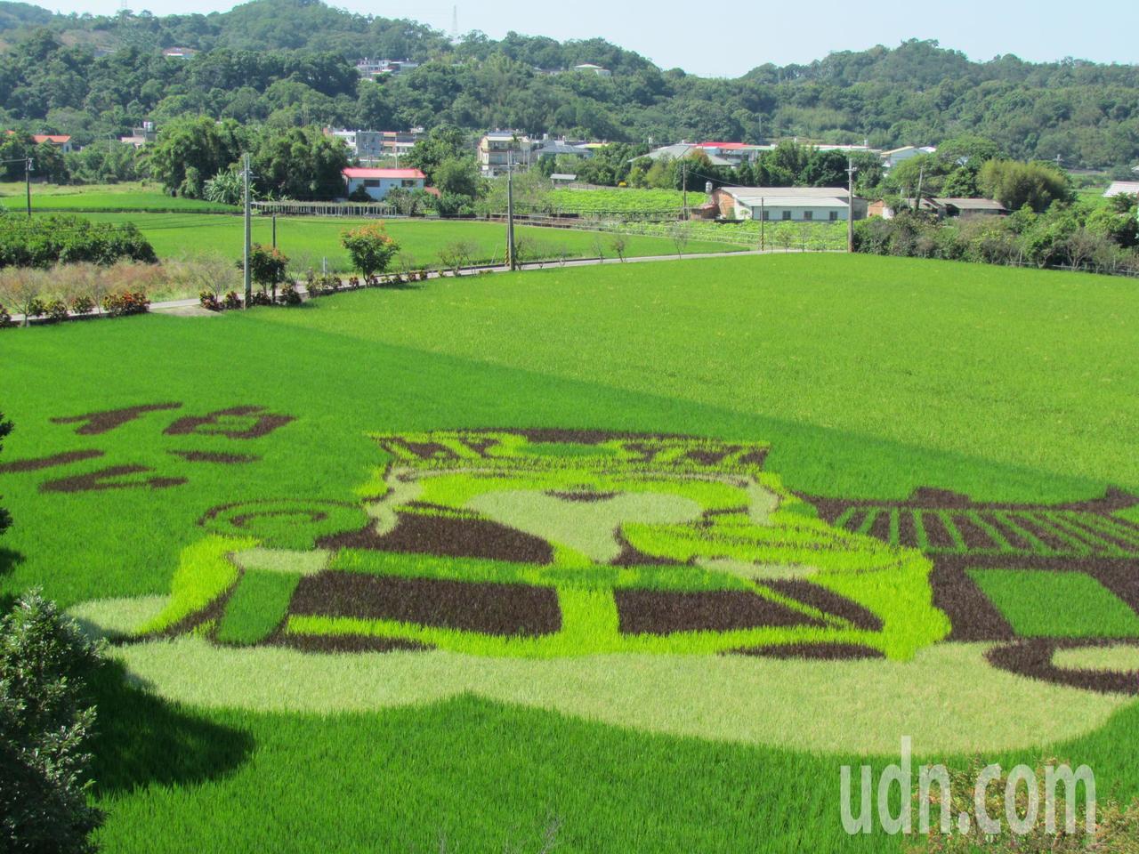 苗栗縣南庄農夫市集今天開幕,一旁「客家土地公」為題的稻田彩繪,新亮點讓遊客驚艷。...