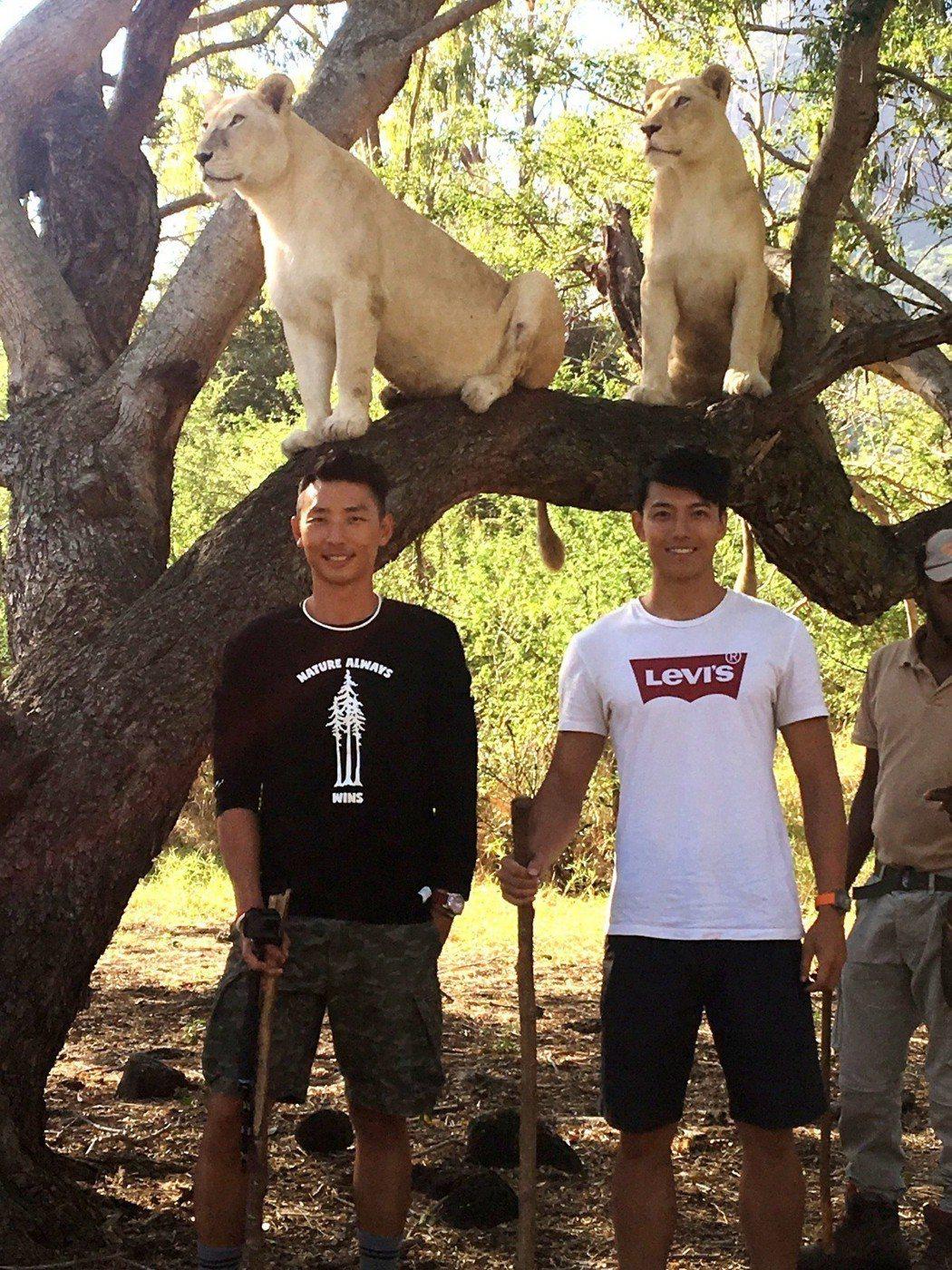 賴東賢和賴俊龍跟獅子合照。圖/三立提供