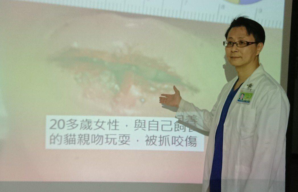 高市聯合醫院急診科主任陳介凡說,該院收治遭咬傷患者,有近7成都是被寵物咬傷,一名...