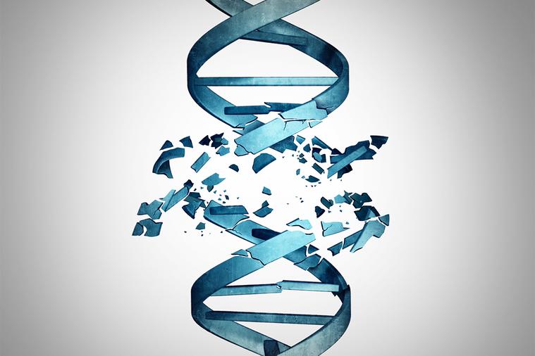 科學家現在可以使用CRISPR有效的一次引入突變,而不像以前那樣,得千辛萬苦挑選...