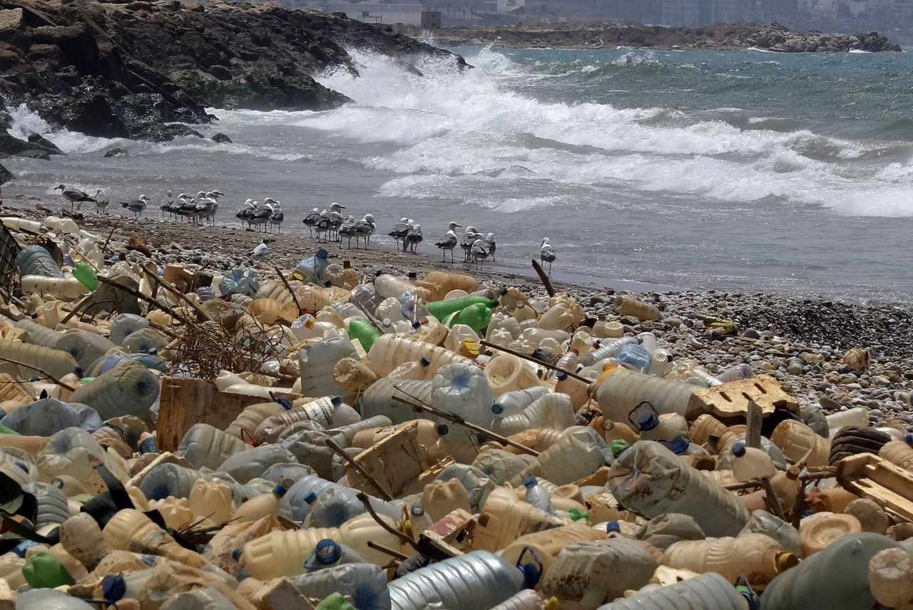 塑膠侵害比你想像得還可怕。法新社