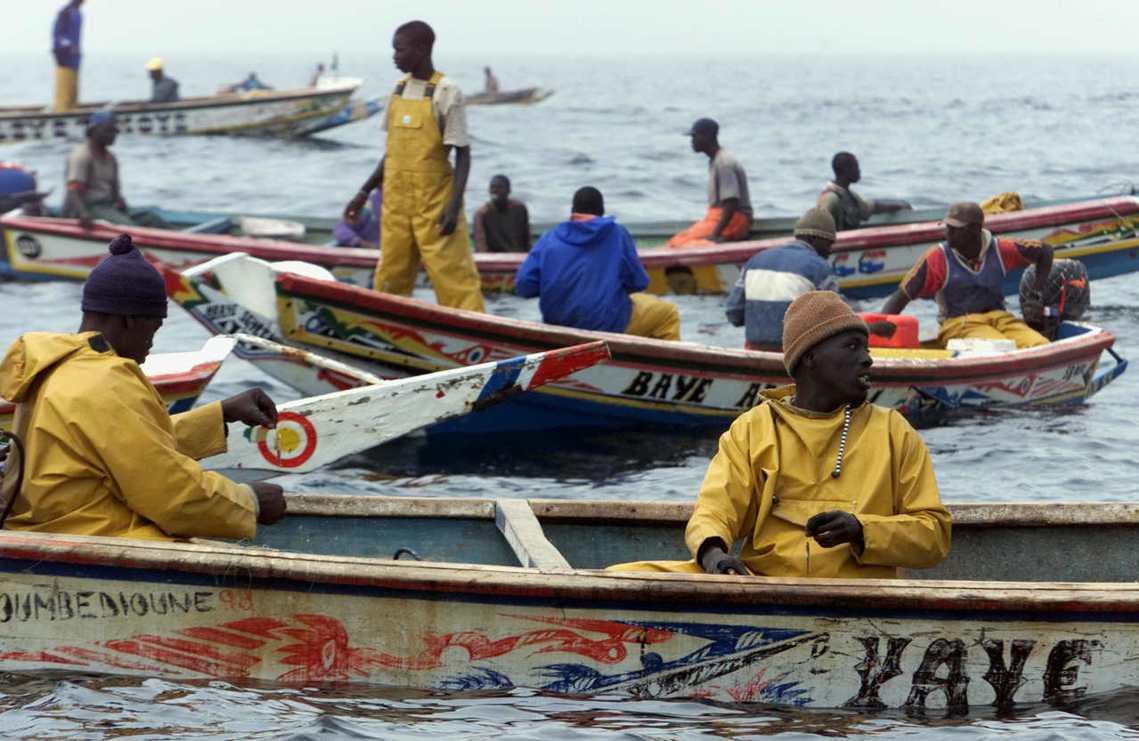 綠色和平的非洲海洋專家西塞指出,漁民現代化不足的設備固然是造成危害的原因,但塞國...