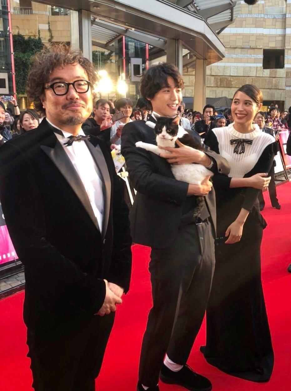日本「壁咚男神」福士蒼汰抱著貓走上紅毯,注意力卻忍不住被「只有大海知道」團隊吸引...