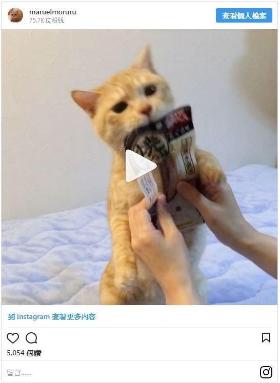 圖/擷取自instagram,Bella儂儂提供