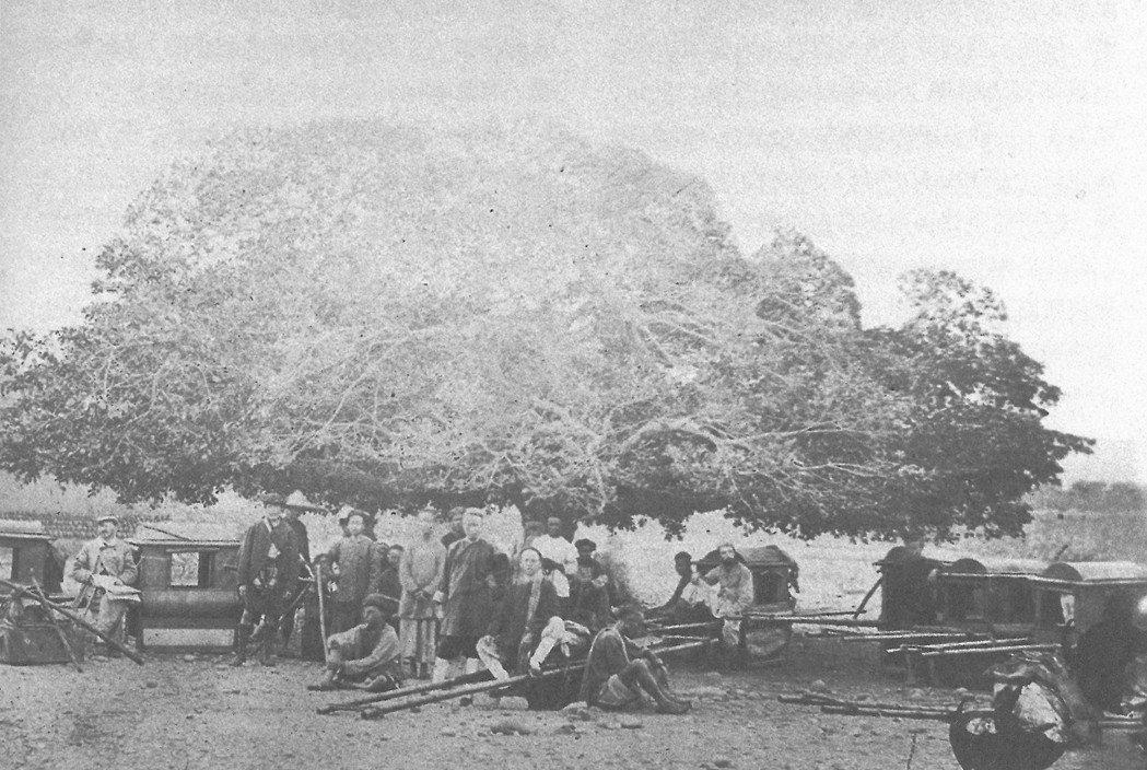 1869年探險隊一行人,於大甲附近的大榕樹下留影。李仙得(左1持地圖者,左眼戴眼...