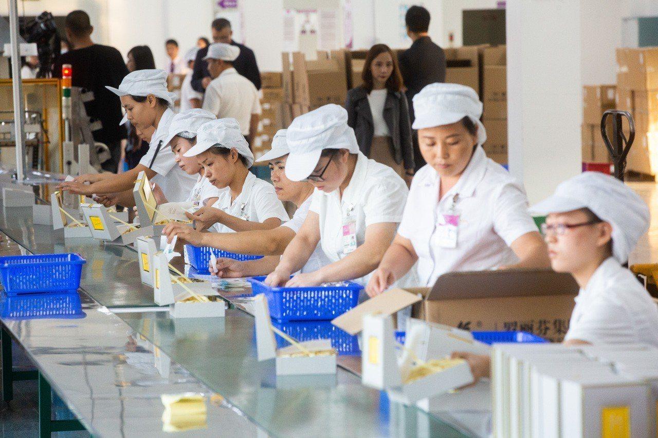 工廠中,女工將一張張標籤貼上產品,履行羅麗芬集團「一物一碼」的堅持。 圖/萊阜行...
