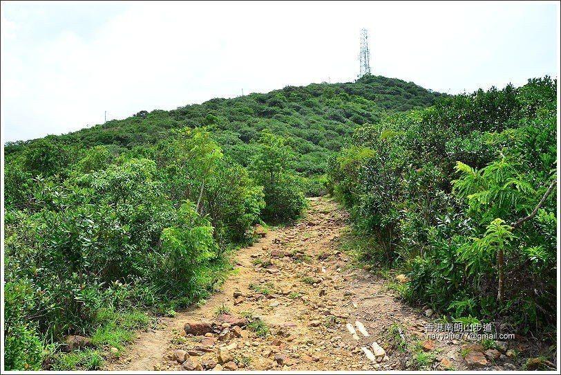 步道上段轉為土石徑。