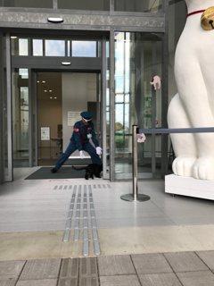 這間美術館有何魅力 一再吸引喵星人闖關?