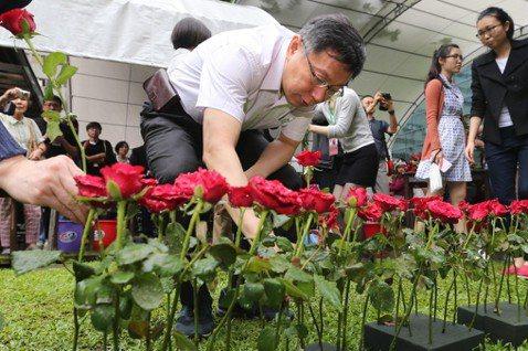 柯文哲台北市長任內多少文資慘遭毒手?(下)