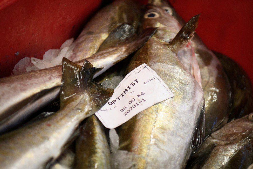 英國漁業的硬脫歐派,對於歐盟來說象徵著典型的傲慢——但歐盟單一市場絕非予取予求的...