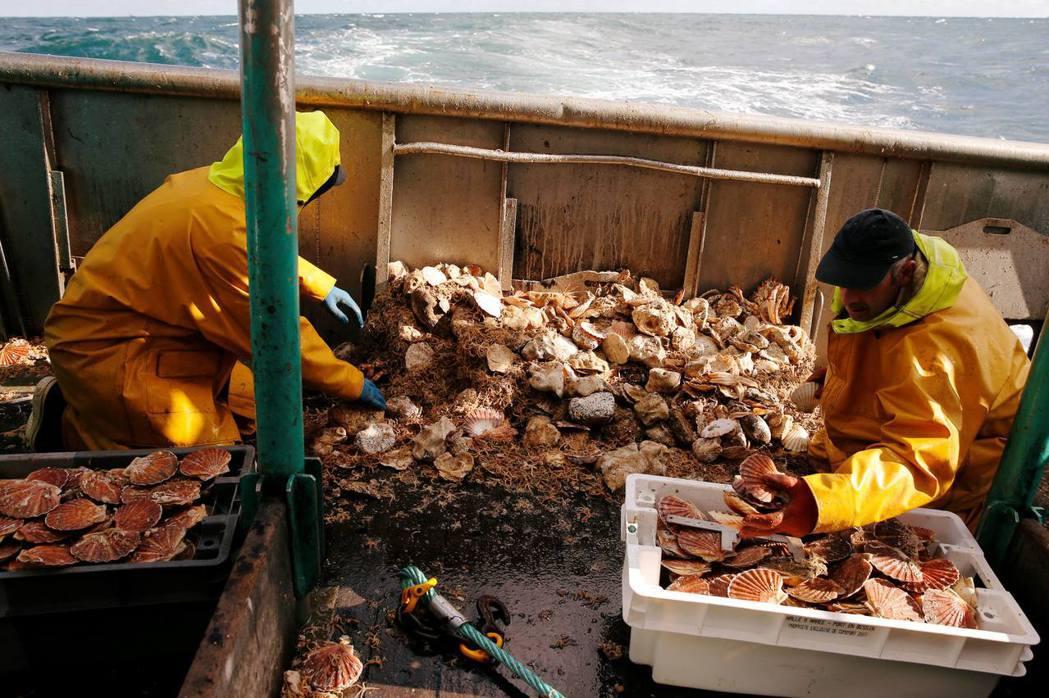今年法國希望將15米以下的漁船也加入協定,令談判破裂,釀成了這次的衝突。這一次的...