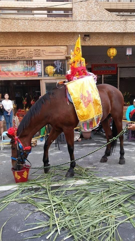 這才是東港迎王平安祭典的王馬。圖/民眾提供
