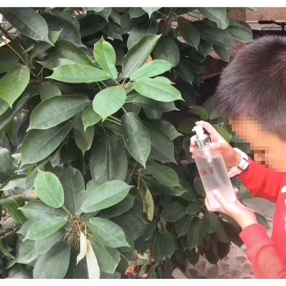 網友表示爸爸要他帶弟弟去陽台澆花,還特別交代要用「這一罐」花才會開得漂亮。圖/擷...
