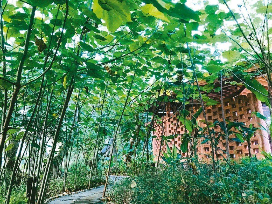 花博后里森林園區的「四口之家」,利用稻桿、木頭、黏土、沙等天然材料打造「永續屋」...