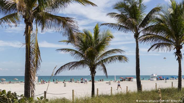 邁阿密擁有極棒的氣候、美麗的沙灘和棕櫚樹,適合準媽媽在此待產。取自德國之聲