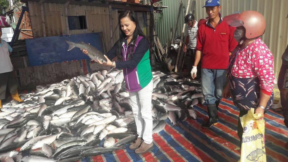 漁民在烏魚池裡圍網,連網帶魚吊掛上岸,很多老饕爭相搶購。照片/賴清美提供