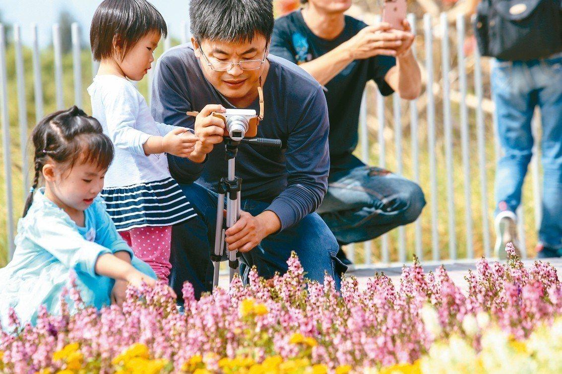 台中世界花卉博覽會登場,民眾捕捉各種花卉的美照。 記者王騰毅/攝影