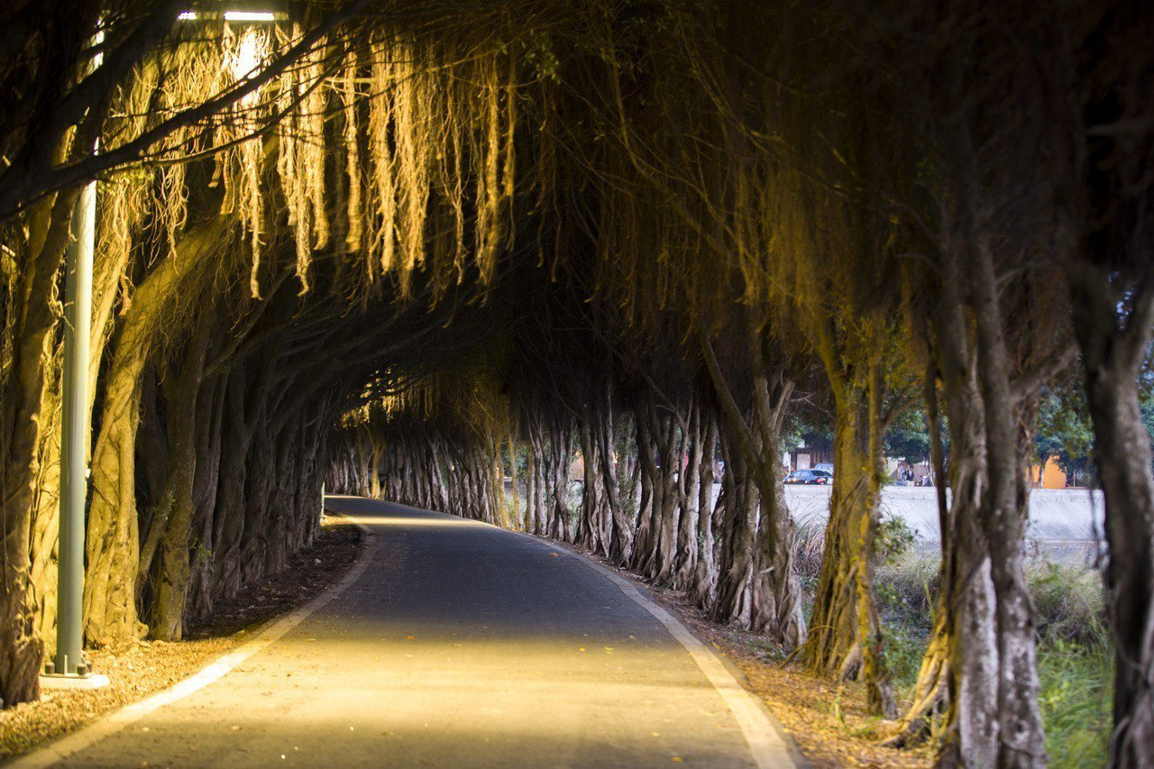 新竹市17公里海岸線過去因照明不足夜晚危險,新竹市府已完成更換440盞低維管燈具...