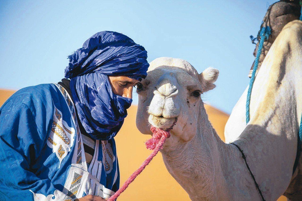 除了三毛的浪漫故事,撒哈拉沙漠本身就很迷人。 圖/蔡適任提供