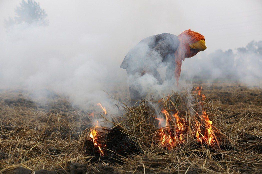 印度農民焚燒稻草,加劇霾害問題。歐新社