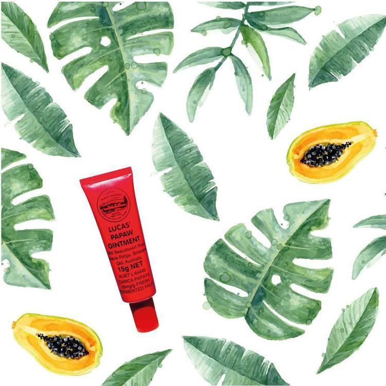 澳洲木瓜霜雖然主成分是凡士林,但因為有木瓜蛋白酶,效用不少。圖/摘自lucasp...