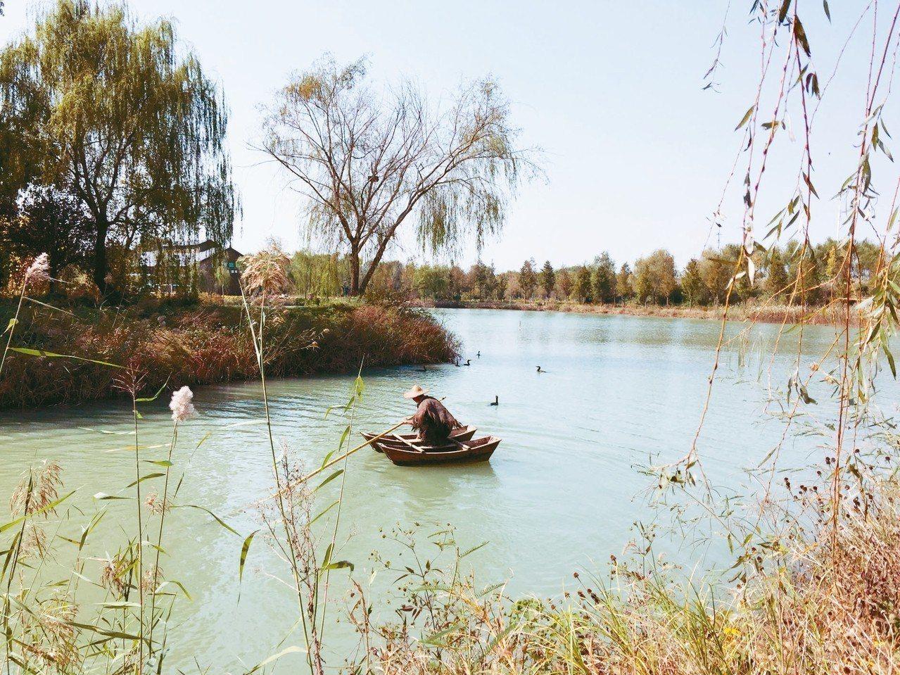 洪澤湖濕地為民眾表演魚鷹抓魚的技藝人