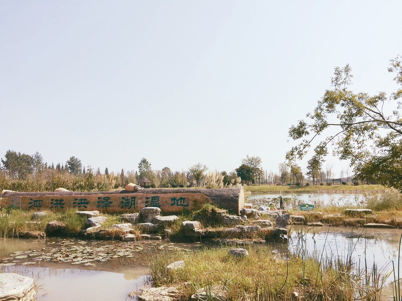 洪澤湖濕地公園,四季美景迷人。 記者汪莉絹/攝影