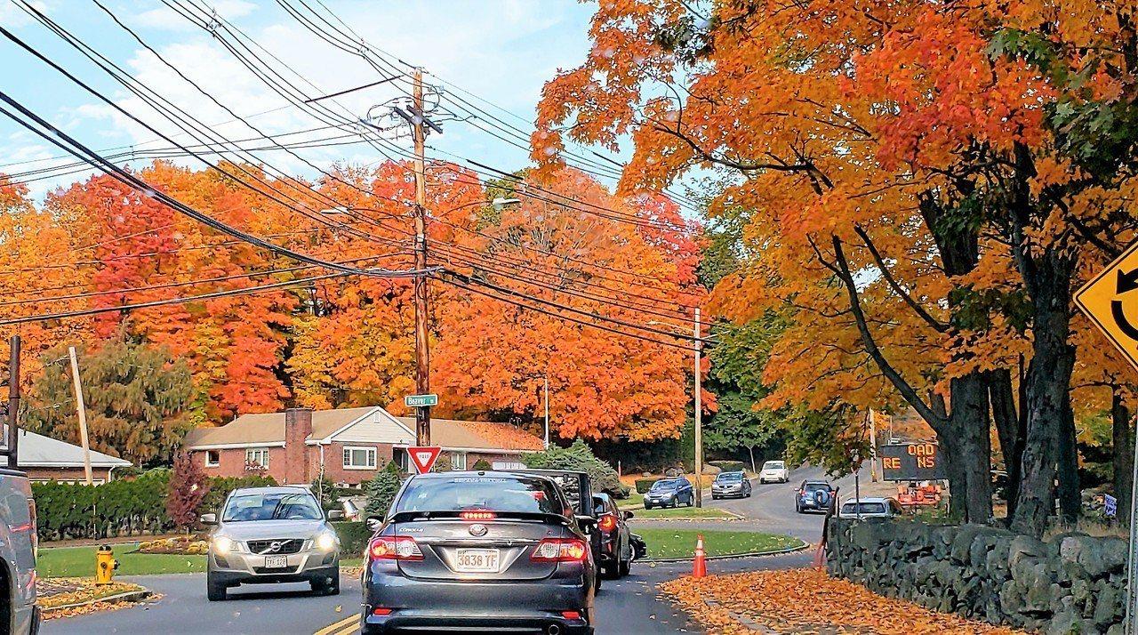 許多人都有「今年秋葉特別美、季節特別長」的感覺;專家證實,氣候暖化確實正在改變新...