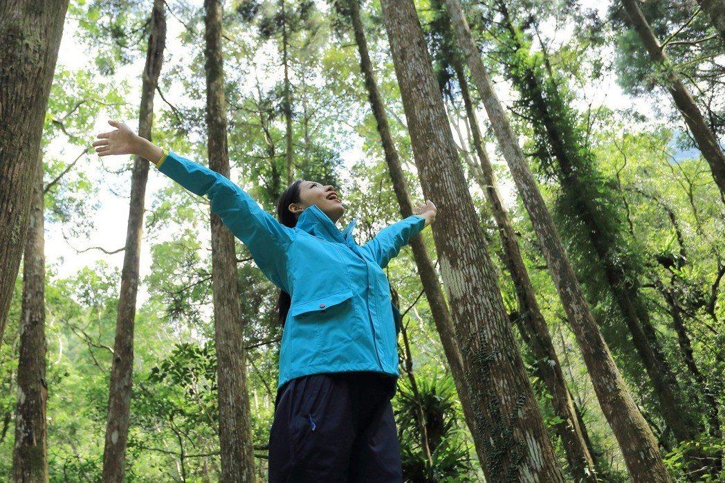 ▲抗PM2.5 走進森林裡健康深呼吸(圖片來源歐都納)