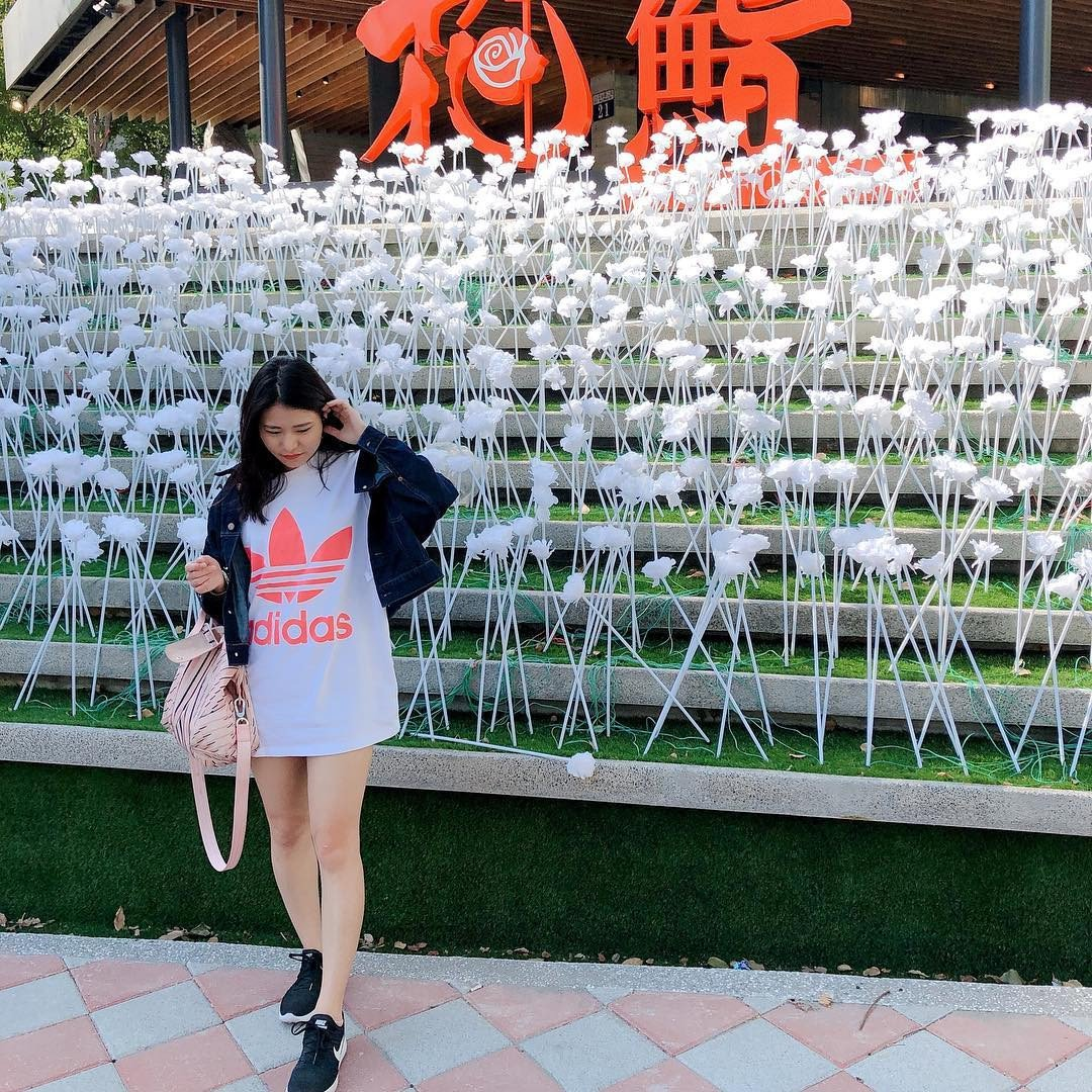 (圖/IG@victorialee0325提供) ▲近2萬朵與東大門一樣的純白玫...