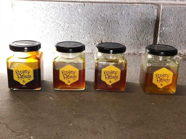 Honey Testing可以嚐到墨爾本不同地區的蜂蜜口味,完全反映風土。圖/記...