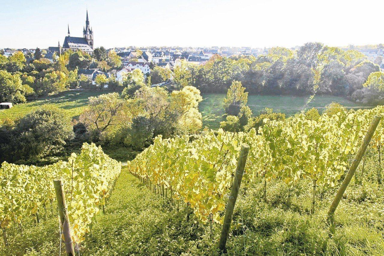 德國基德里西蜿蜒起伏的山丘與色彩繽紛的靜謐酒莊。 圖/Klook客路、Booki...
