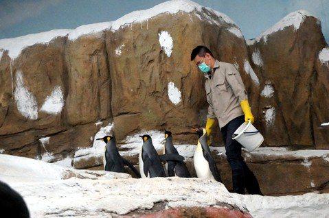 吳宗憲/在大學課堂討論動物園,就是極佳的跨域學習