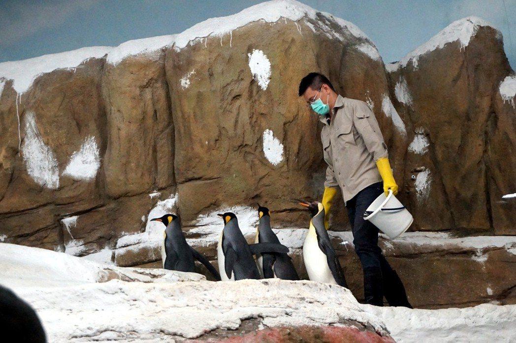 圖/台北市立動物園提供