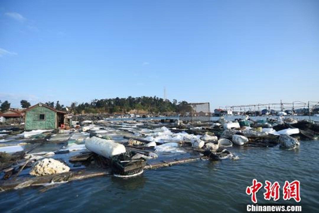 受事故影響,不少泡沫浮材被腐蝕,當地漁民損失嚴重。(中新社)