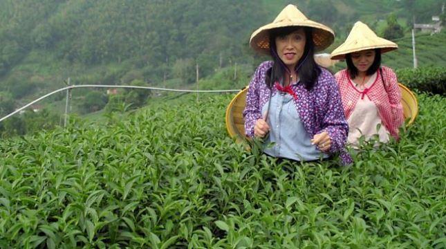 BBC旅遊節目到台灣遊玩,而「美食」竟然成了遺珠之憾。圖擷自The Trav...