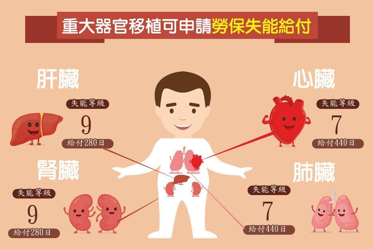 只要因病接受心臟、肺臟、肝臟或腎臟等器官移植,都可以申請失能給付,依照不同部位給...