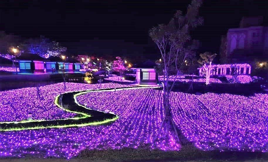 屏東車城鄉四重溪溫泉公園浪漫的紫色薰衣草燈毯。 圖/尤俊明提供